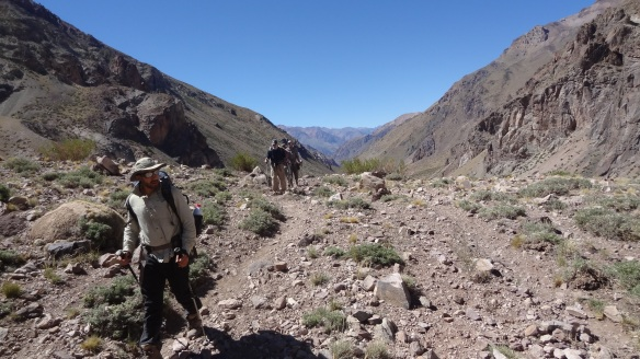 The trek on up the dry and dusty Guanacos Valley continues....