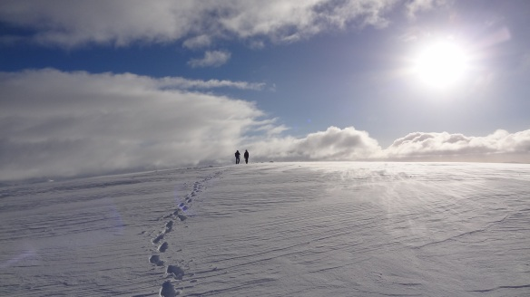 En route to the summit of Aonach Mor. Fabulous, isn't it?