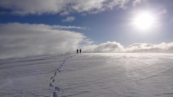 En route to the summit of Aonach Mor. Fabulous, isn't it?