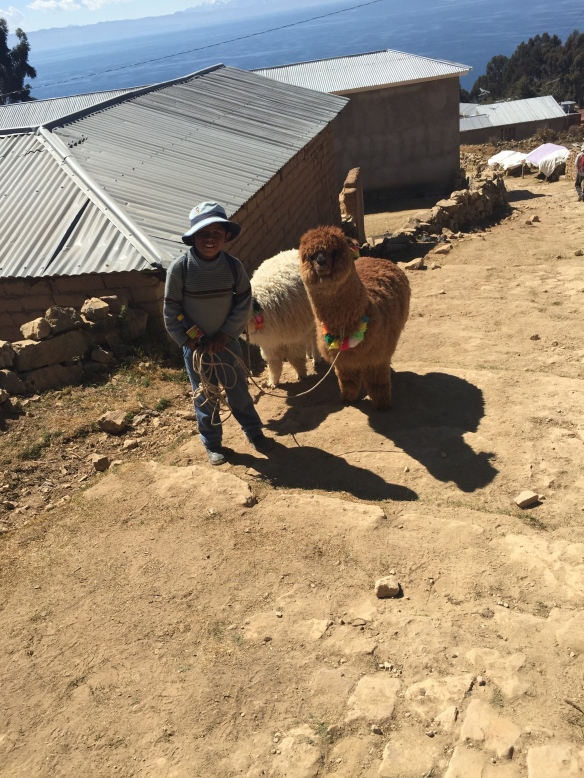 Local boy (who very enterprisingly charged me 2 Bolivianos for the privilege of taking his photograph) tasking his Alpaca for walkies.